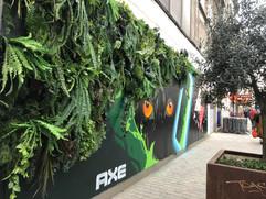 AXE Fresh Forest Graffiti