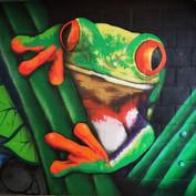 Graffiti Kikker.jpg