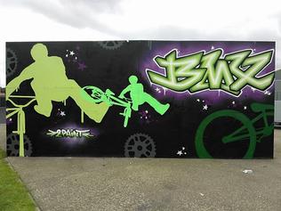 BMX en Skate park van Ham