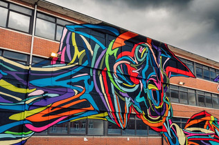 1000 m² Street Art Mural in Brussel
