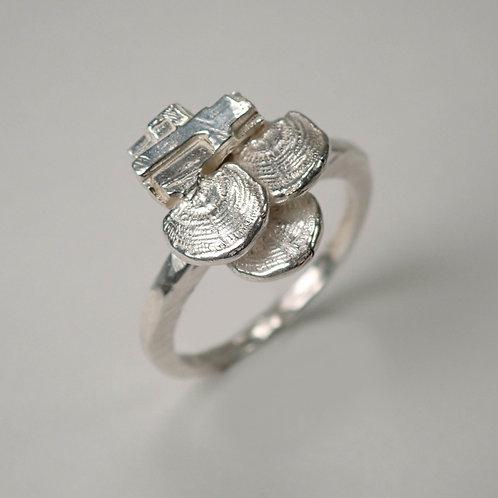 ウチワタケ×珪化木 シルバーリング tree mushroom & silicified wood silver ring