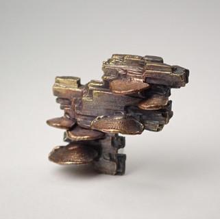 ウチワタケ×珪化木 ピンブローチ