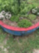 blueplanter_edited.jpg