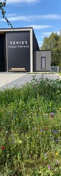 Revier Fassade Blumenwiese .jpg