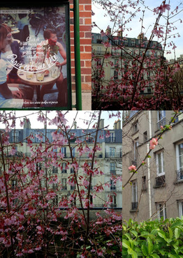 Paris fête le printemps!