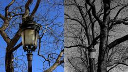 Les tristesses et les joies des parisiens