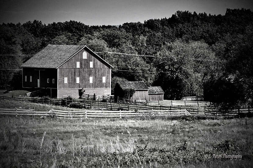 Farm in Black and White