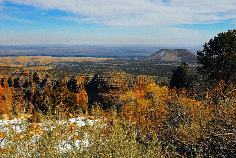 Arizona Vista