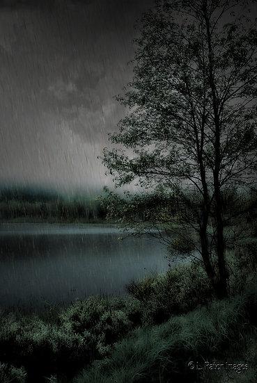 Rainy Morn