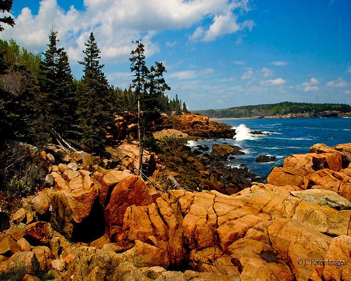 Acadia 5