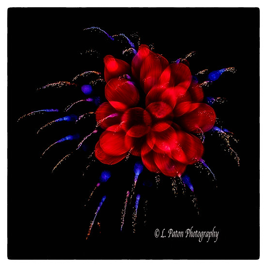 Abstract from fireworks 19