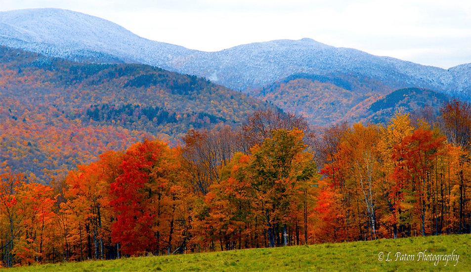 Vermont 1