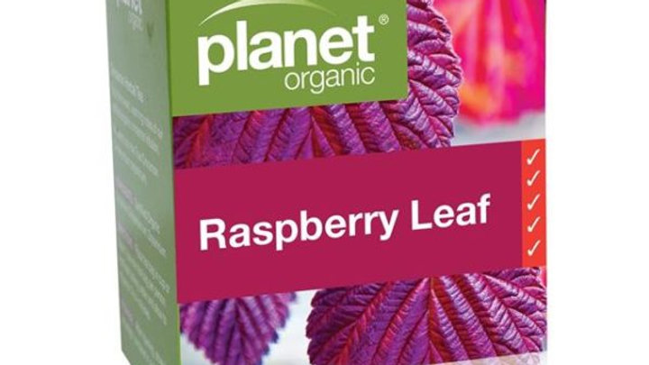 Planet Organic Raspberry Leaf Tea Bags 25S