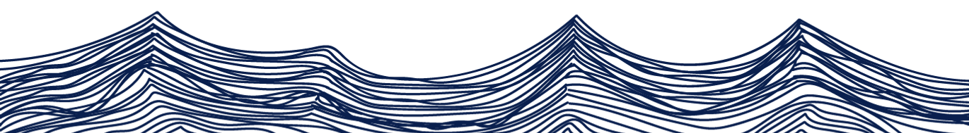 footer wave.png