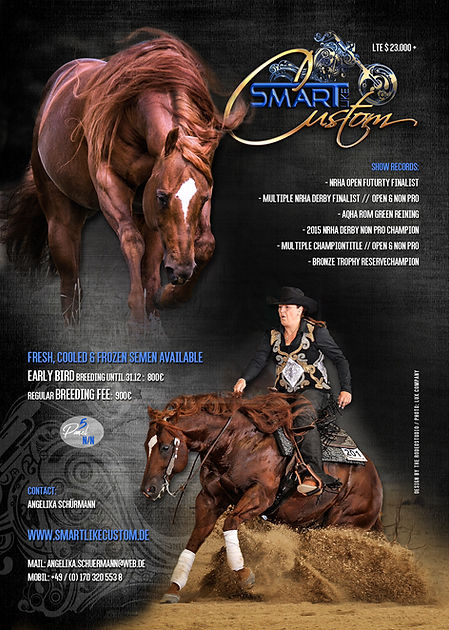 smarty_stallioncard02.jpg
