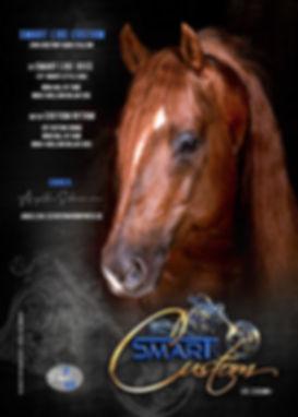 smarty_stallioncard01.jpg