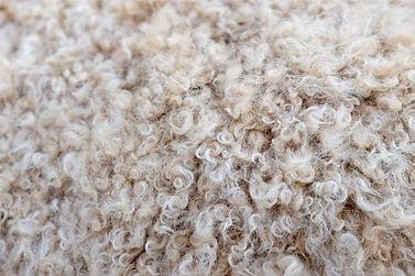 rahatnook-wolle-gebetsteppiche.jpg