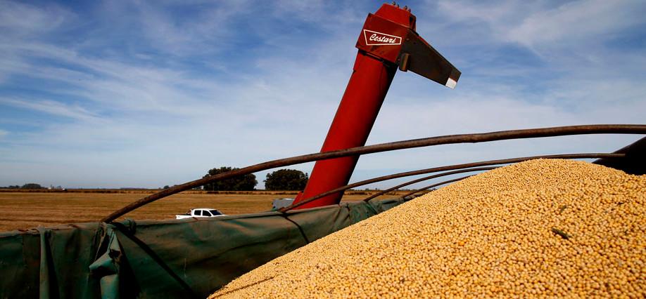 Afip eliminó los formularios en papel para productores y operadores de granos