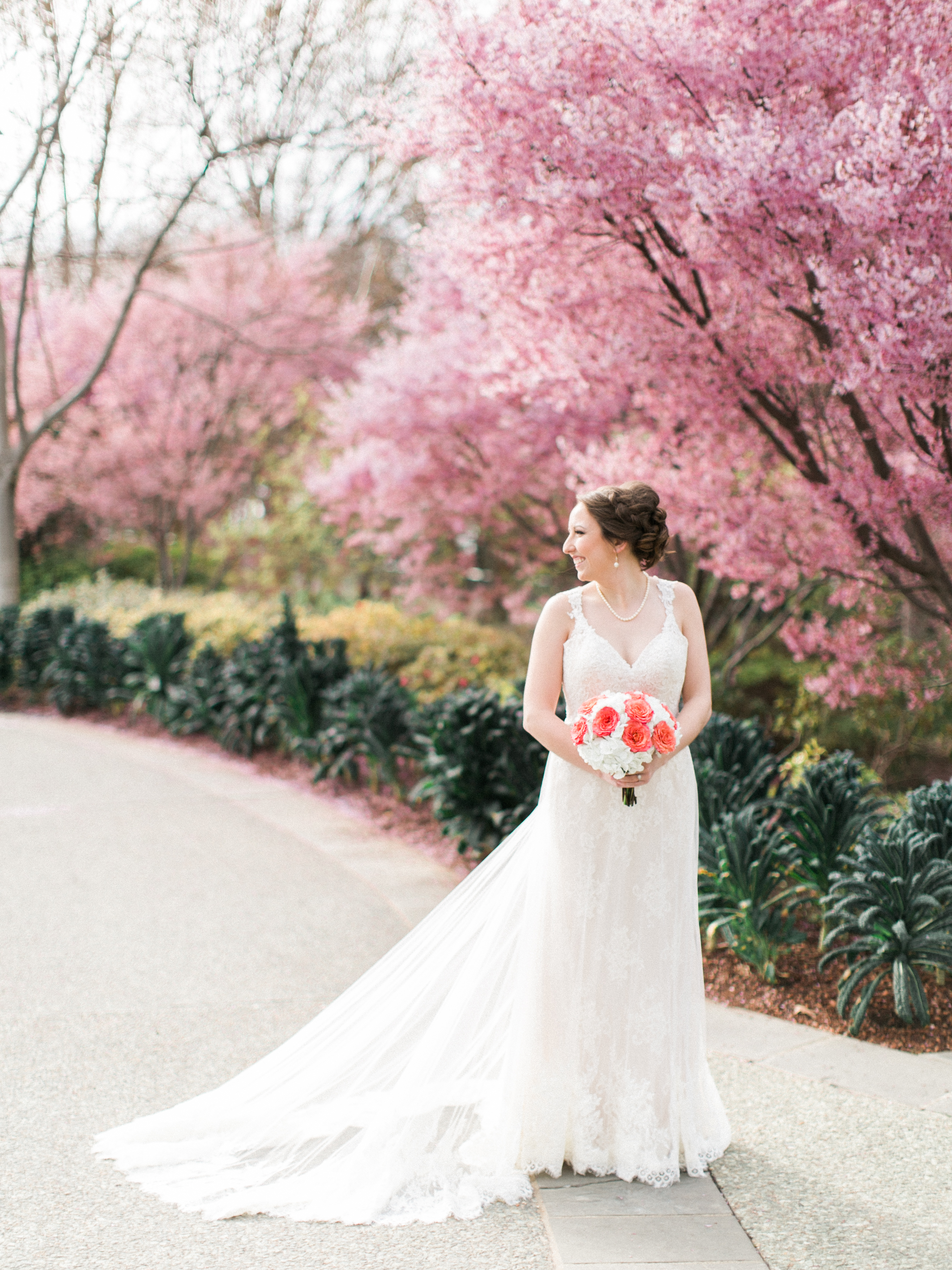 Elisabeth Carol Photography