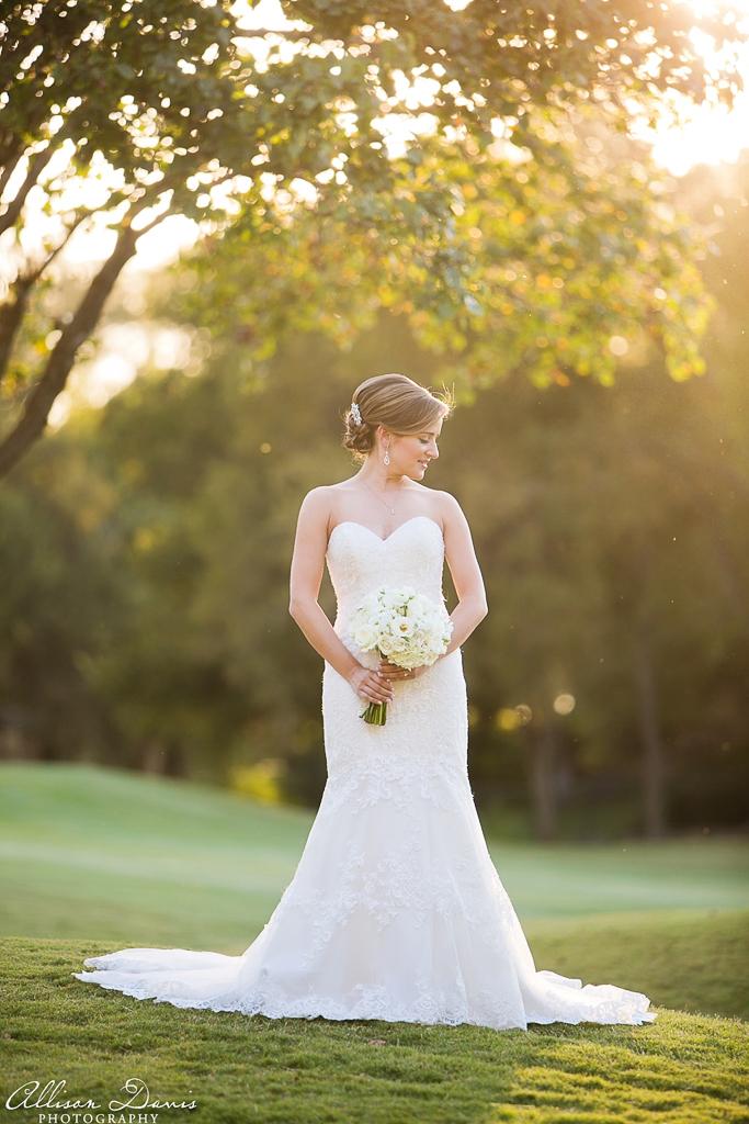 Allison Davis Photography