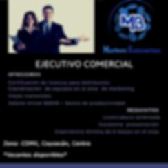 Ejecutivo_Comercial_MARBERC_-_página-_bu