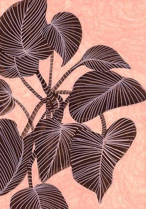 planta 11 low.jpg