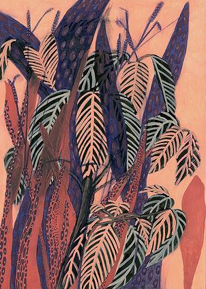 plants tropical