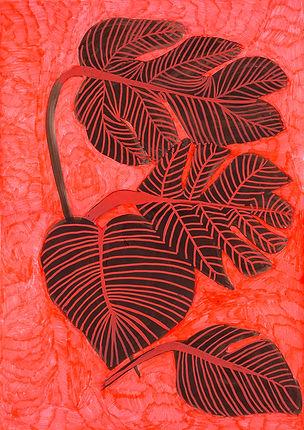 planta 12 low.jpg