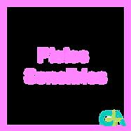 logo61.png