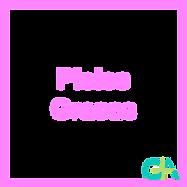 logo66.png