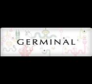 loggerminal.png