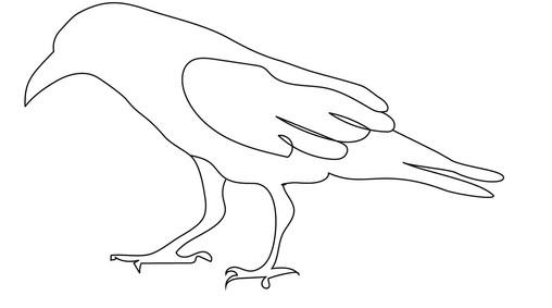 Raven by Laurie Lehmann