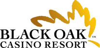 Revised BOCR Color  Logo.png