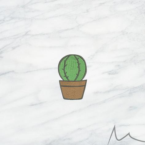 002 Cactus