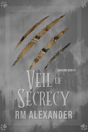 Veil of secrecy official cover-page-001.