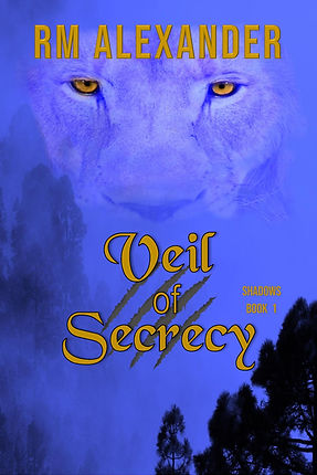 veil of secrecy new cover-page-001.jpg