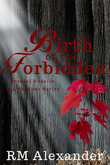 cover for forbidden beginnings-page-001