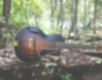 Layne guitar.jpg