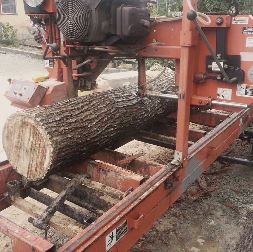 Milling Silky Oak onsite