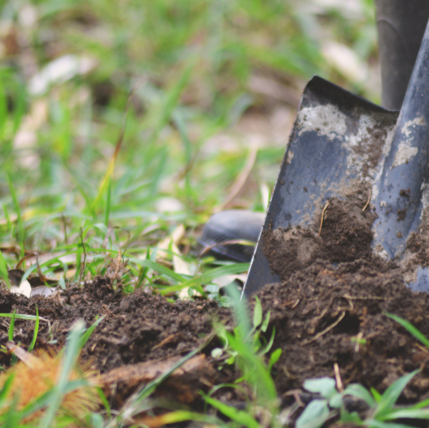 Digging deep to find good soil