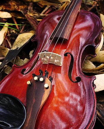 violin gloss.jpg