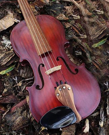 Violin satin.jpg