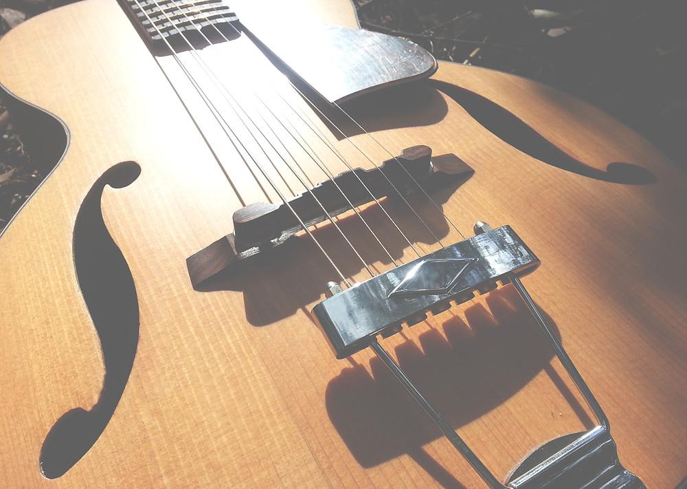Tree Hugger sustainable traveller guitar