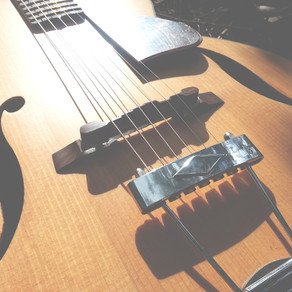 ENDANGERED WOODS & GUITAR SUSTAINABILITY  – what musicians need to know.