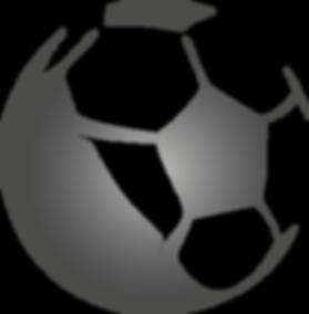 ypfc - yvon pouliquen foot conseil - agent de joueur