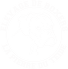 BoxerDuTeide_Logo_N.png
