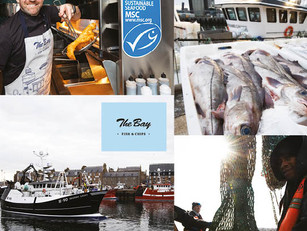 The Bay joins seafood charity in highlighting local sustainable seafood for their summer staycation