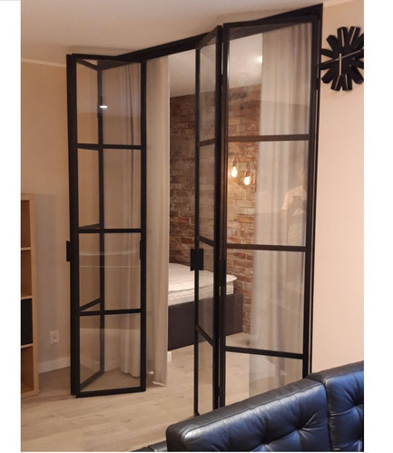 Steel Bifolding Door