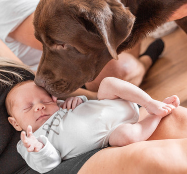 Newborn Babyfotografin Babyshooting Baby Newbornshooting Fotografin Braunschweig Spotlight Moments