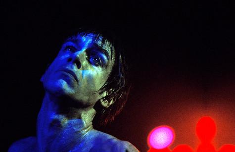"Blue Iggy NYC 1977 © Mick Rock  11""x14"" $1,200 USD (limited edition of 90)  16""x20"" $2,000 USD (limited edition of 90)  20""x24"" $2,500 USD (limited edition of 50)  24""x30"" $4,000 USD (limited edition of 35)  30""x40"" $7,000 USD (limited edition of 25)  40""x60"" $12,000 USD (limited edition of 10)"